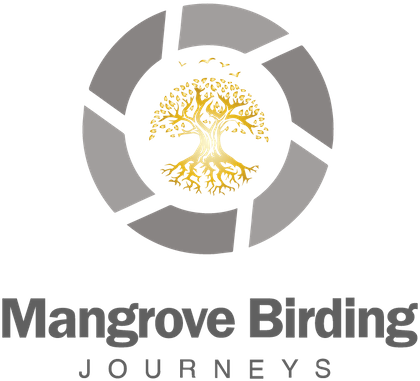 Mangrove Birding Journeys